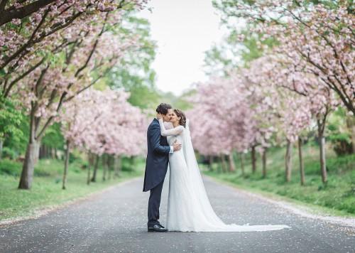 Hochzeitsfotograf Köln Braut & Bräutigam Paarhooting Kirschbäume
